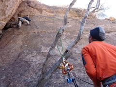 Rock Climbing Photo: Climbing Moon Line