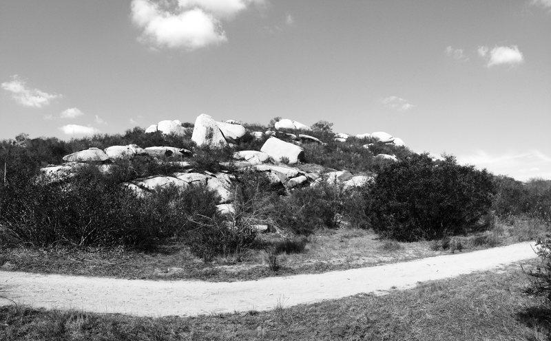 Rock Climbing Photo: Trail Side Cirque!