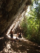 Rock Climbing Photo: Firulay Wall (The Gym)