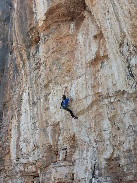 Rock Climbing Photo: Alex