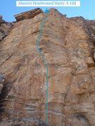 Rock Climbing Photo: Massive Headwound Harry (February 2014)