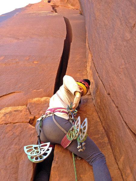 Rock Climbing Photo: I like big cams and I cannot lie.
