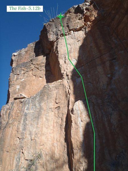 Rock Climbing Photo: The Fish (February 2014)