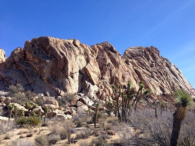 Lost Horse Wall, Joshua Tree NP