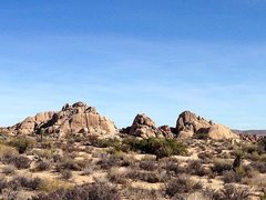 Rock Climbing Photo: Jumbo Rock Area, Joshua Tree NP