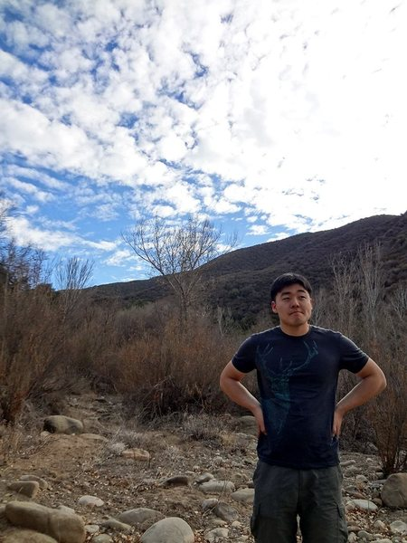 Los Padres National Forest.