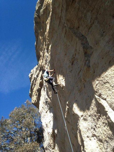 Rock Climbing Photo: el rolas