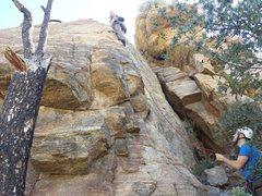 Rock Climbing Photo: Anna clipping the second bolt.  Climb starts direc...