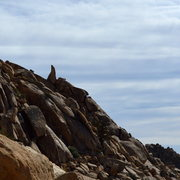 Rock Climbing Photo: Cool Dome Pinnacle from the north