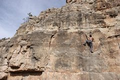 Rock Climbing Photo: mental block party. photo by Lindsey Western