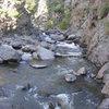 Trail bottom looking upstream
