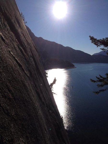 malamute above starr ledge