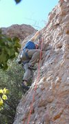 """Rock Climbing Photo: Checking for loose holds on """"Oolong."""""""