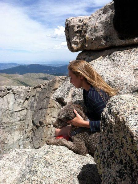 Mt. Evans hike!
