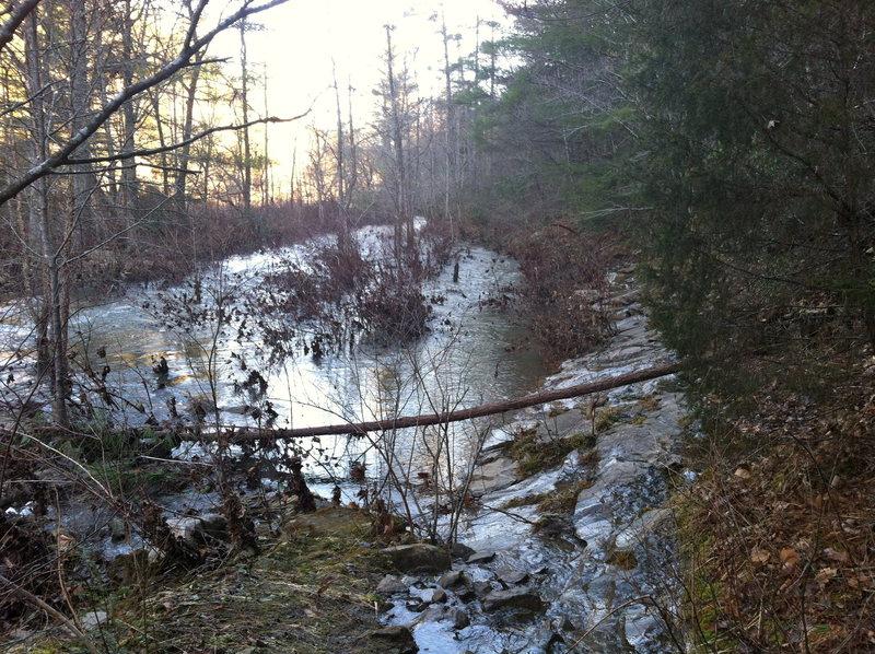 Little Clear Creek trail in February after rain.
