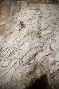 Rock Climbing Photo: Amy on TR