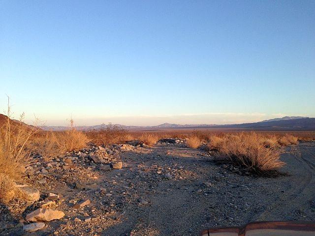 Pinto Basin, Joshua Tree NP