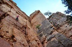 Rock Climbing Photo: Chauncey cruising Block Party while I struggle on ...