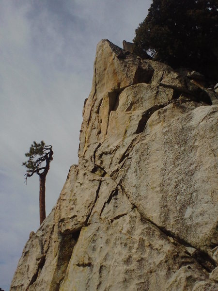 Rock Climbing Photo: Esso purdy.