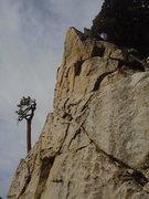 Rock Climbing Photo: Esso purdy.