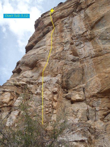 Rock Climbing Photo: Don't Tell (February 2014)