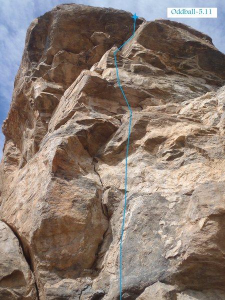 Rock Climbing Photo: Oddball (February 2014)