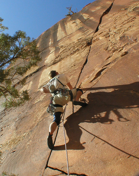 Rock Climbing Photo: Dolores River Canyon - Pump House Crag, awesome fi...