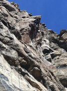 Rock Climbing Photo: Steve Thomas in the crux.