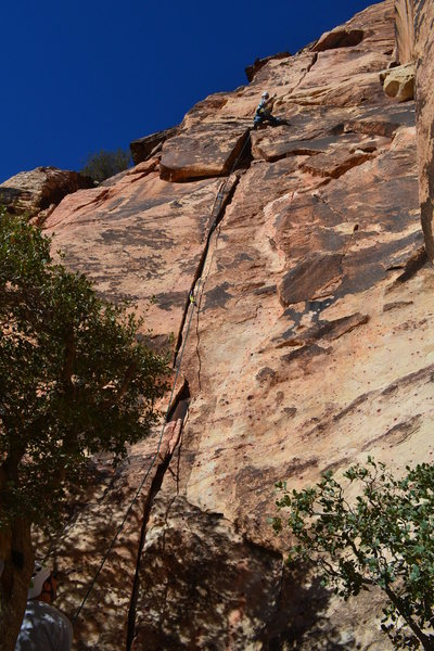 Rock Climbing Photo: Weston L throwing up the horns while leading Out o...