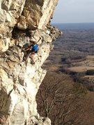 Rock Climbing Photo: Joy Cox entering the crux of Decievious.
