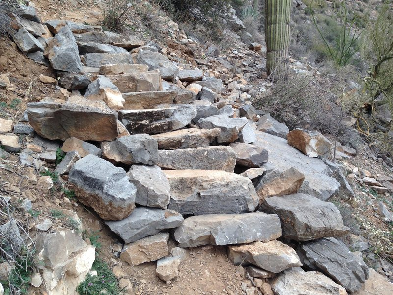 Did a lot of trail work this year at the Homestead. This is just one set of steps that is part of 69 new steps we did up to Tufa City. I'm very proud to be part of a (very small) group of Climbers that's not afraid of spending a little time and money at The Homestead.