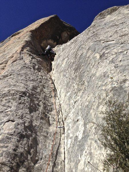 Rock Climbing Photo: Little, dirty climb.