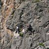 Kaynaklar X.Climbing festival