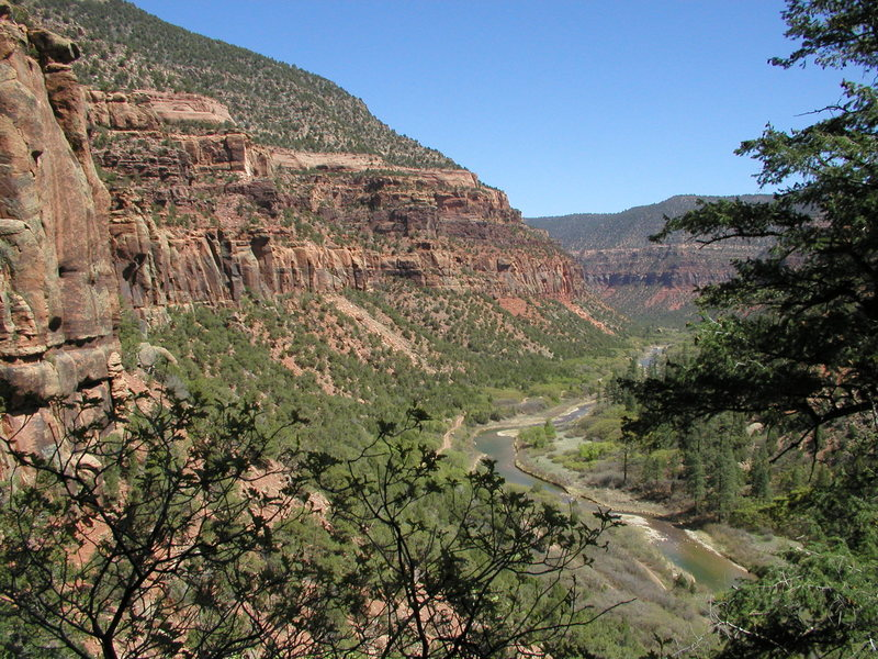 The Dolores River Canyon near Dove Creek, CO. Wingate sandstone lines this relatively tame (and dammed) Western Slope river.