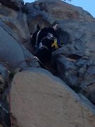 Rock Climbing Photo: Trad Climb