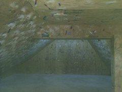 the climbing gym