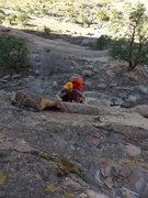 """Rock Climbing Photo: start of """"pitch"""" 1"""