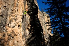 Rock Climbing Photo: A good perspective on Silverback and much of the r...
