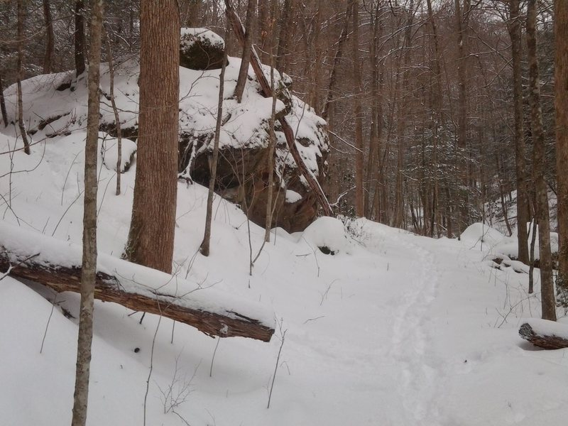 If coming from the Whittleton campground, turn left up the hill at this boulder (which is the second boulder before the trail dips to cross the stream) . Fallen trees on the ground generally point to the wall.