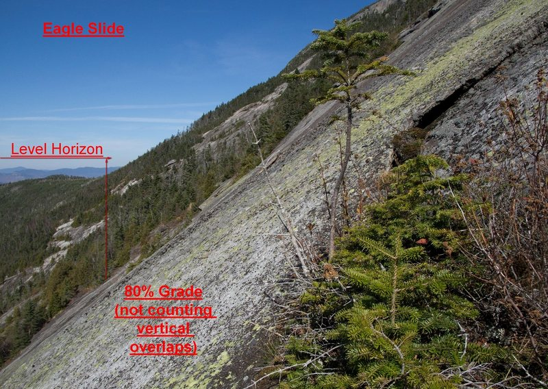 General idea of slab steepness. This isn't a hard climb, but it is 5th class slab steep in places, and fairly sustained. However, there are plenty of lower angle rest spots, and unfortunately, more and more tree islands.