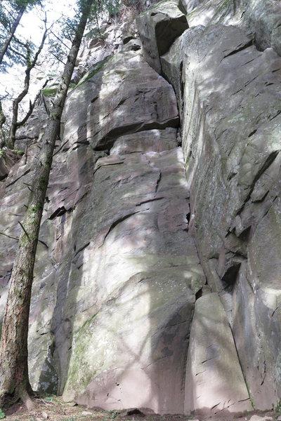 Rock Climbing Photo: Ripper