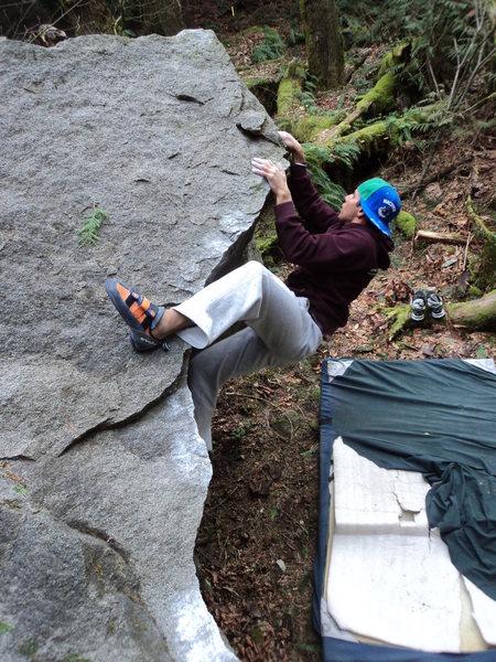 Rock Climbing Photo: Lotus