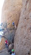 "Rock Climbing Photo: Another satisfied customer descends from ""Sop..."