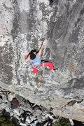 Rock Climbing Photo: super natural .11c, larry land, bowman, ca.