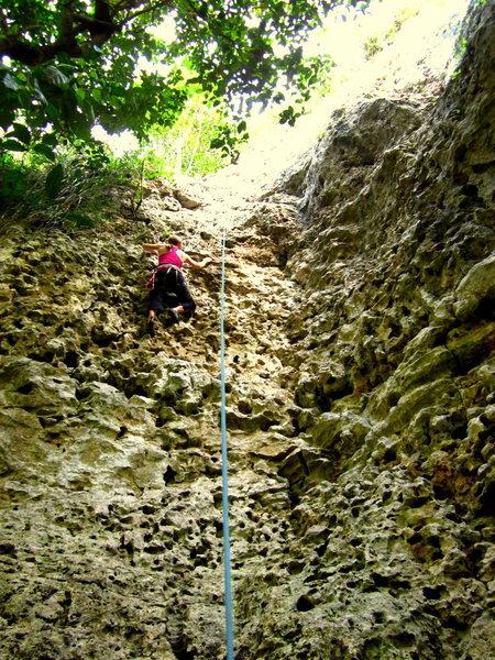 Rock Climbing Photo: March 2014.