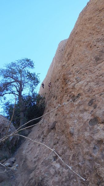"Rock Climbing Photo: Climber in black, on ""Middle Earth."" the..."