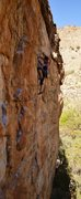Rock Climbing Photo: Elisa searching for a finger jam.