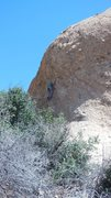 "Rock Climbing Photo: ""Lonestar"""