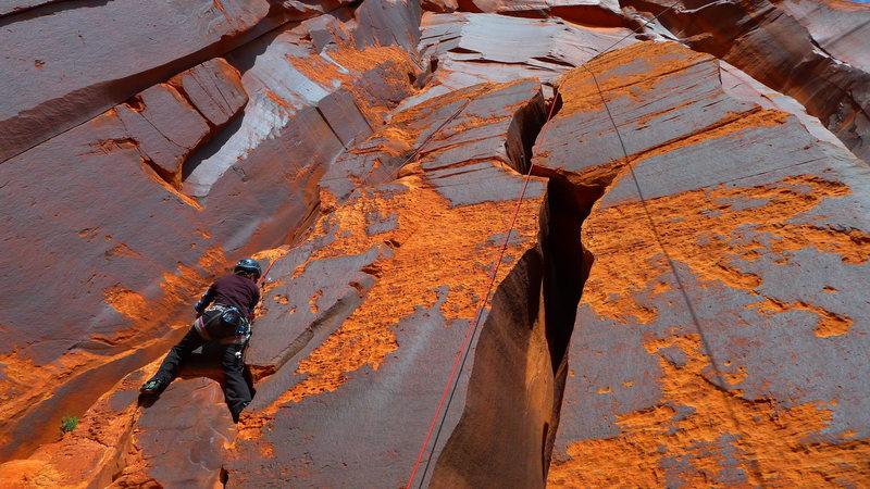 Rock Climbing Photo: Climber on Broadie Machine.
