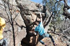Rock Climbing Photo: Dynoish